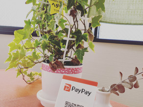 PayPayがご利用いただけるようになりました