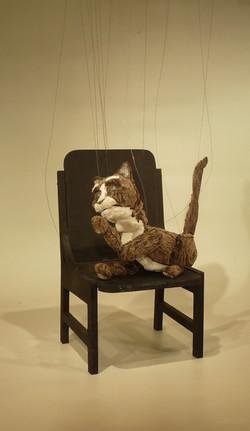 gato lamiendose 2