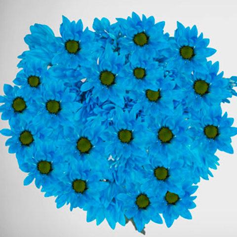Tinted Blue Pastel