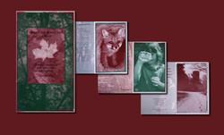 Brochure, Indian Creek Nature Center