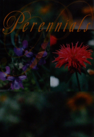 Book Cover Idea, Perennials