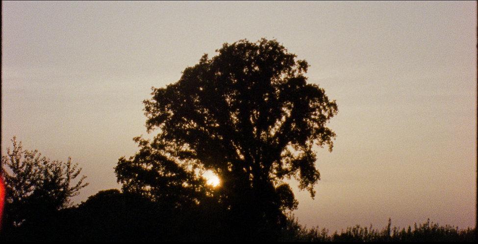 Almaros_TTH_Film_V4_Vimeo.00_10_51_10.St