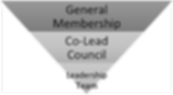governance structure.png