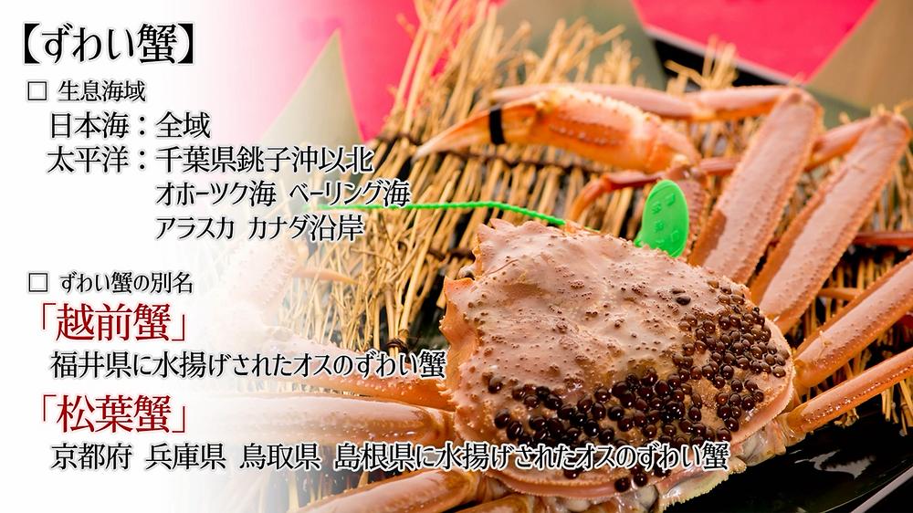 越前蟹 松葉蟹(間人ガニ(たいざがに))