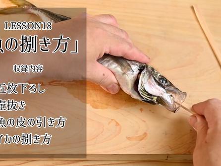 魚の捌き方 五枚下ろし 壺抜き 皮の引き方 イカの捌き方