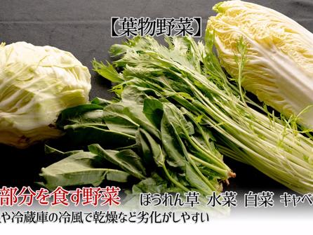 野菜の扱い方 洗い方と保存方法