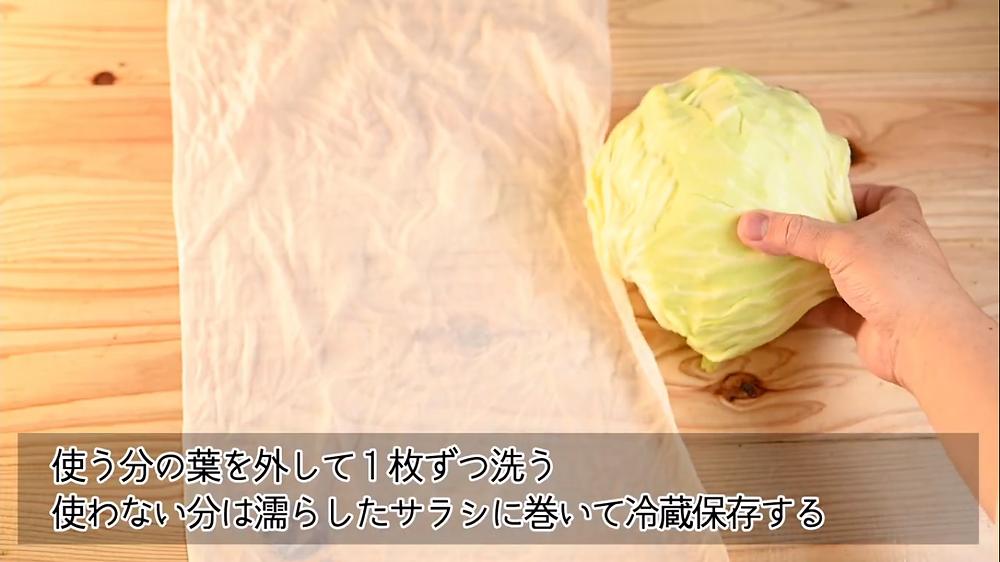 結球性葉菜類