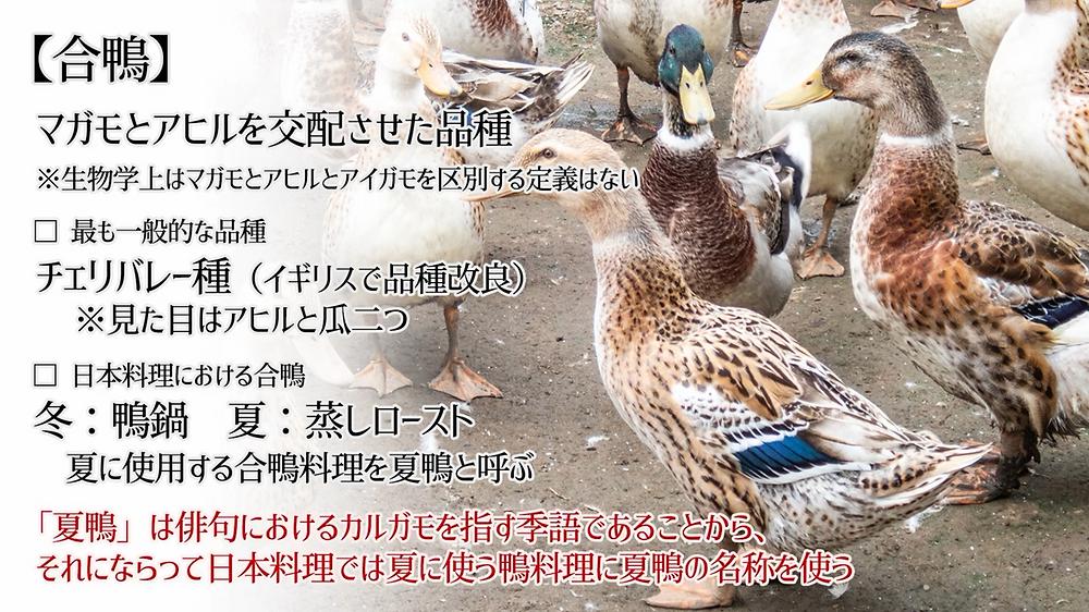 「合鴨」「夏鴨」とは