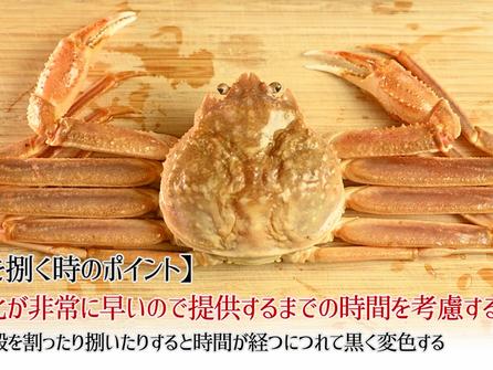 ずわい蟹の説明と捌き方 蟹刺し 焼き蟹 天ぷら