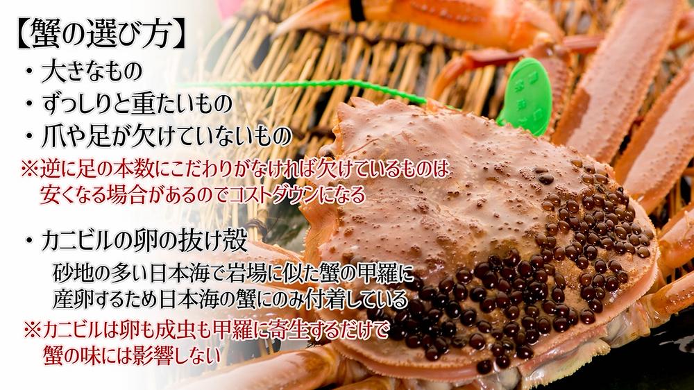 蟹の選び方 カニビルについて