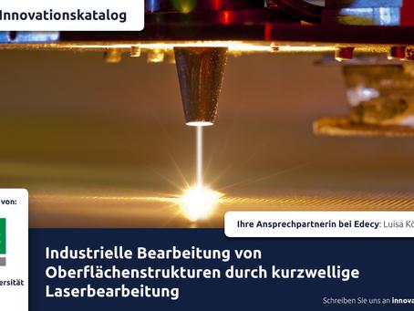 Herstellung funktionalisierter Oberflächenstrukturen durch Laserbearbeitung - InnoKatalog #1