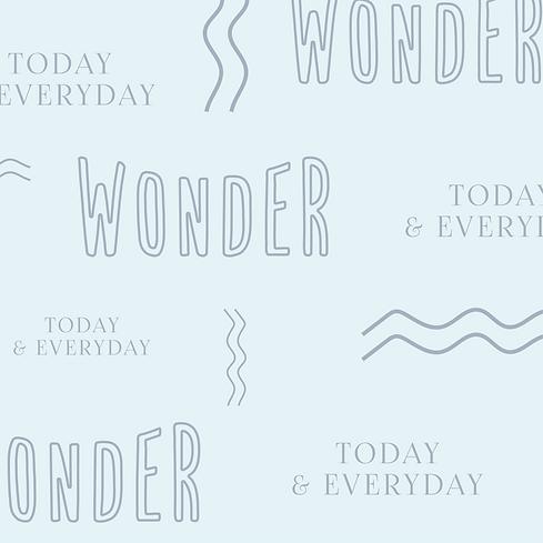 Wonder Pre-made Logo Images-02.png