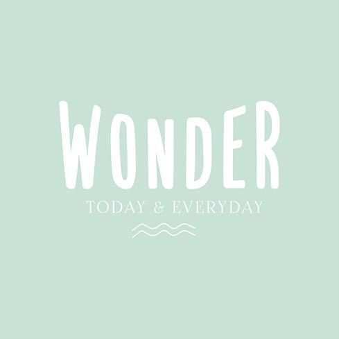 Wonder Pre-made Logo Images-01.png