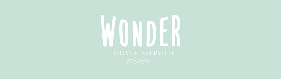 Wonder Pre-made Logo Images-09.png
