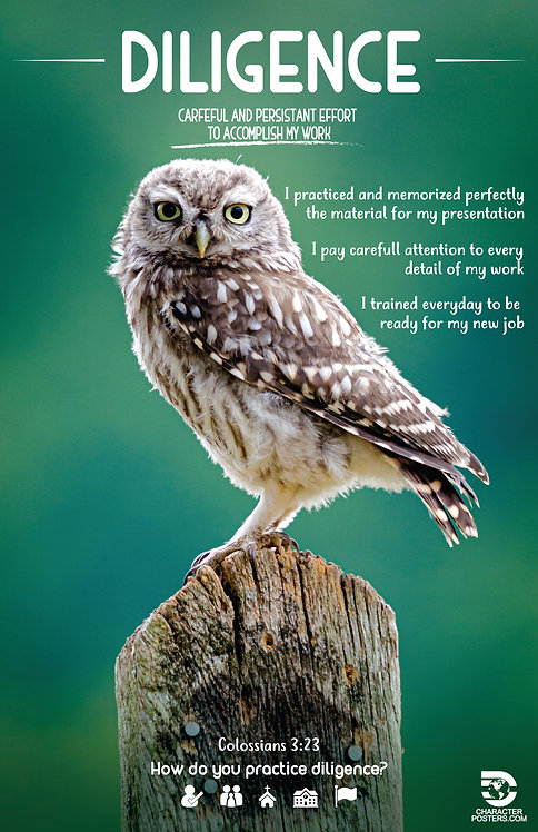 Animals Examples & Bible Verse - Diligence