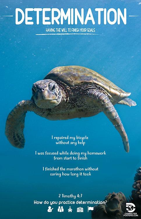 Animals Examples & Bible Verse - Determination