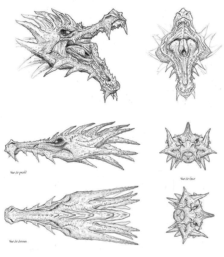 dragon-tete.jpg