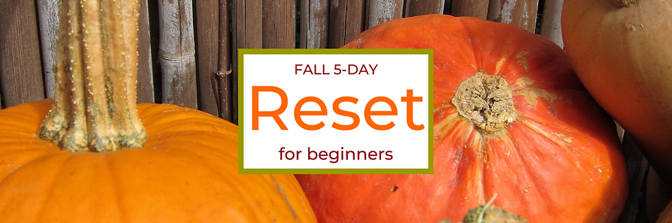 RESET Fall Banner.png