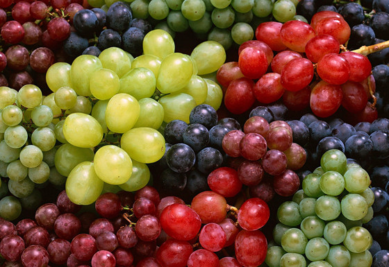 Our fruits