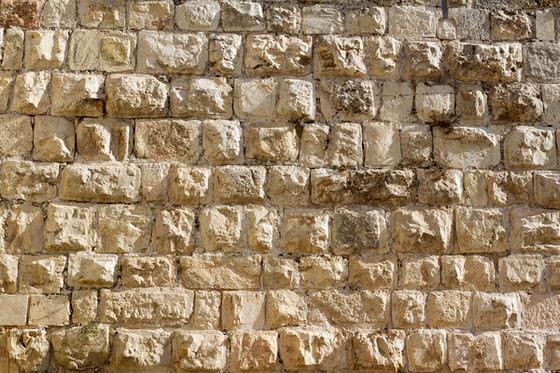 Day 20 - Nehemiah
