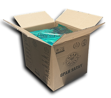 20cm Carton Satay Plastic.png