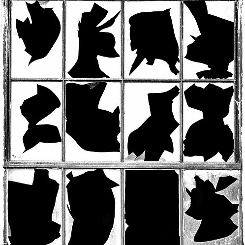 56 BLOOMFIELD, NY - 12 BROKEN WINDOWS