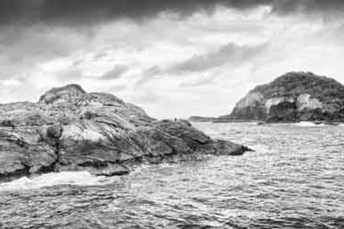 Doubtful Sound, NZ 2016 SEAL ISLANDS