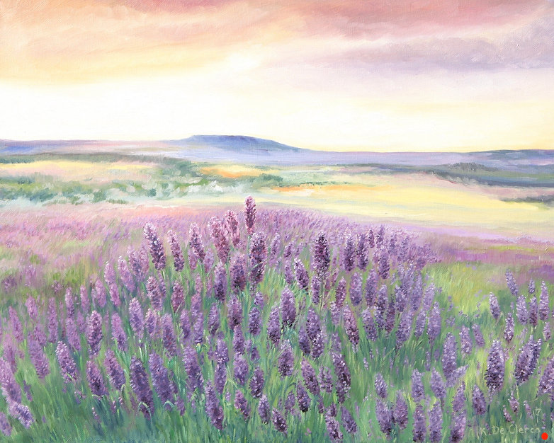 2017 Provence Lavender smell 40,5 x 51 c