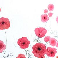 2016 Duo of poppies (2) 30 x 30 cm.jpeg