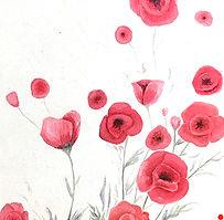 2016 Duo of poppies (1) 30 x 30 cm.jpeg