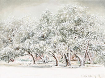 2018 East Beach Oak Trees in Winter 23 x