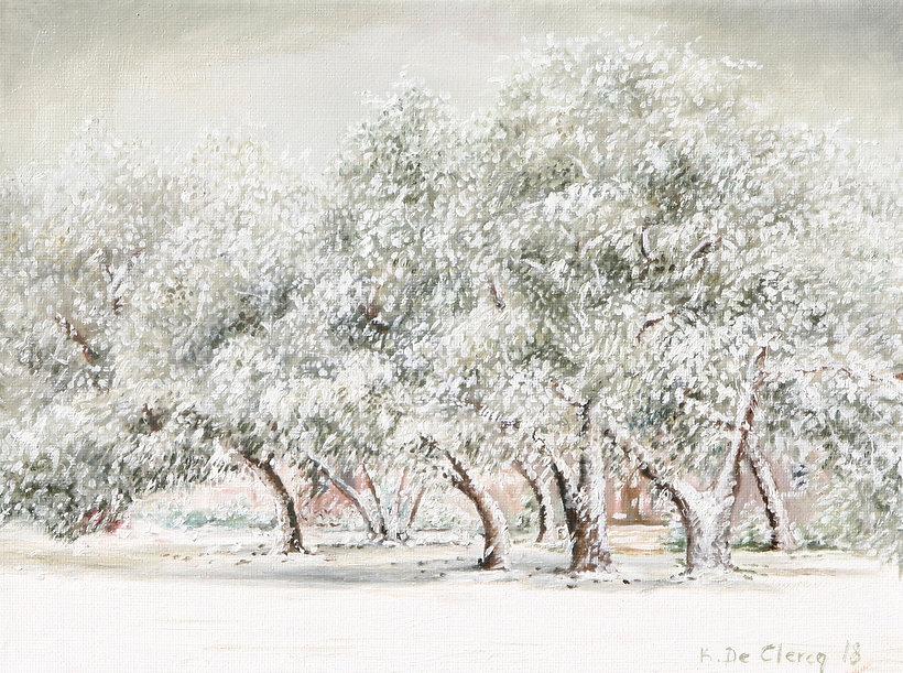 2018 East Beach Oak Trees in Winter 23 x
