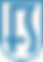 fs logo blue.png