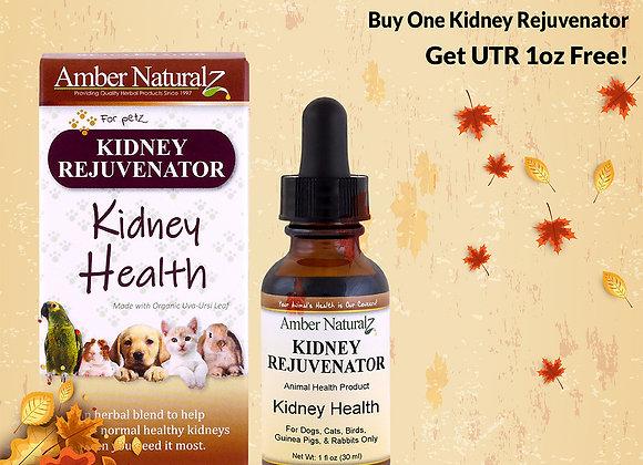 Amber Technology  Kidney Rejuvenator