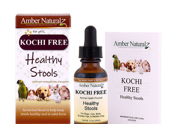 Amber Technology  Kochi Free