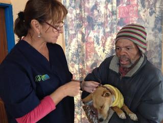 Mass Sterilisation in Loeriesfontein