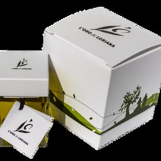 EVO Box 07