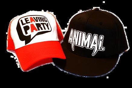 Custom Printed Caps