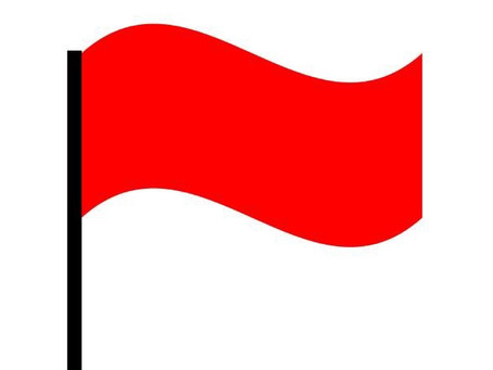 Red Flags for Psychotherapists and Tutors