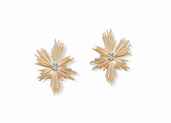 E4ER Evolution earrings