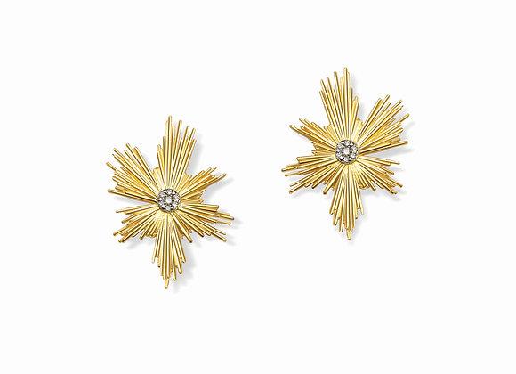 E4E Evolution earrings