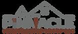 Pinnacle_Logo_MaintGroupInc_.png