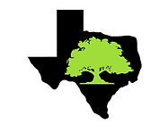 Texas Hill Country Trees