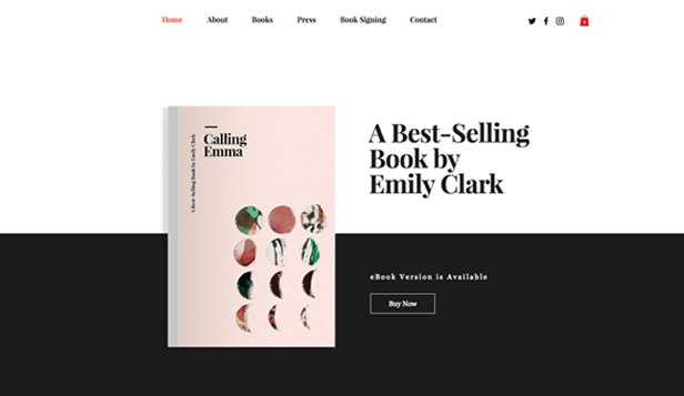 Books & Publishers website templates – Featured Book Store
