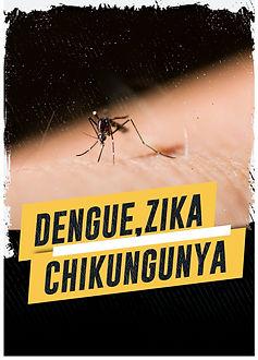 Curso Online - Dengue, Zika e Chikungunya: Epidemiologia, medidas de controle e prevenção
