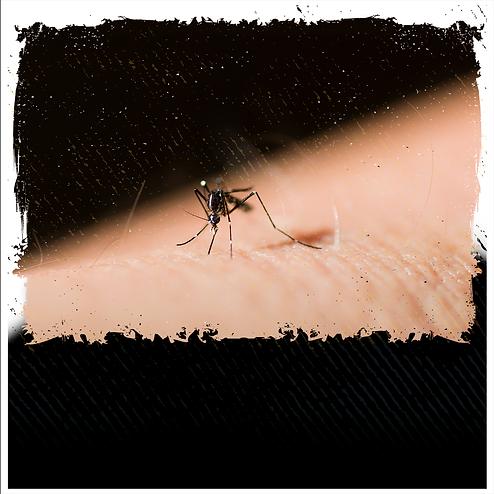 Curso Online sobre Dengue, Zika e Chikungunya - Instituto GPI