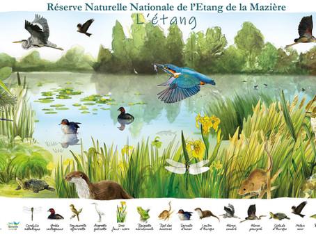 Jeu concours : Gagnez les nouveaux posters de la Réserve Naturelle !