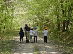 Forêt du Mas d'Agenais