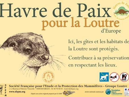 """La Réserve Naturelle de la Mazière labellisée """"Havre de paix"""" pour la Loutre d'Europe"""
