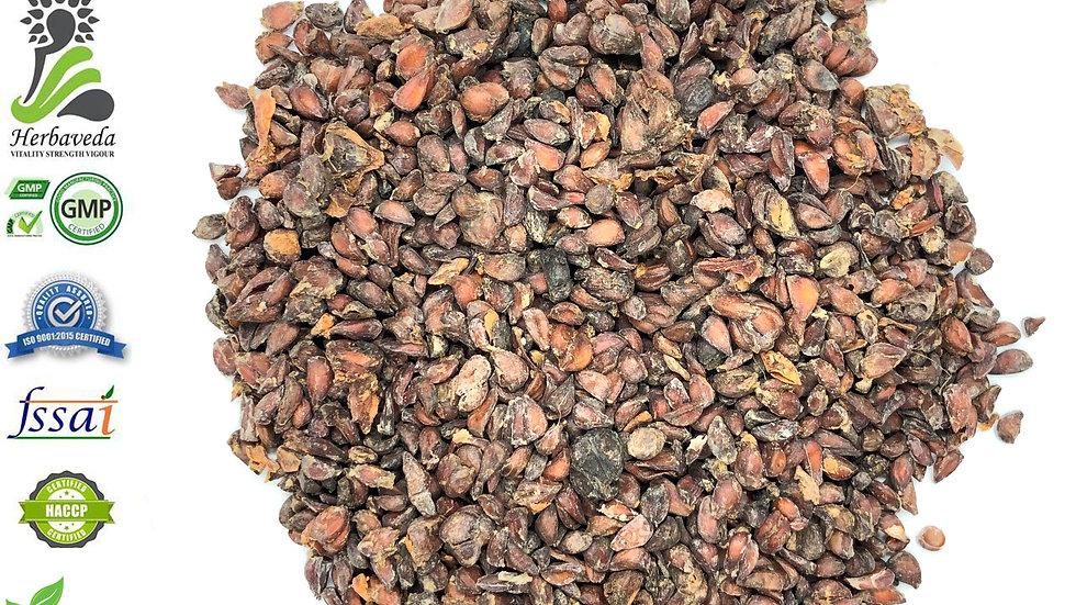 Beedana Quince Seed or Pyrus Cydonia